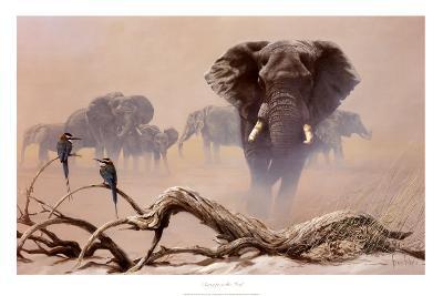 Away from the Herd-Spencer Hodge-Art Print