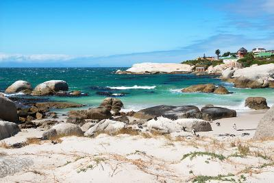 Awesome South Africa Collection - Boulders Beach - Cape Town IV-Philippe Hugonnard-Photographic Print
