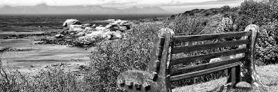 Awesome South Africa Collection Panoramic - View to the Sea B&W-Philippe Hugonnard-Photographic Print
