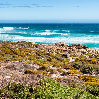 Awesome South Africa Collection Square - Natural Beauty - Cape Town-Philippe Hugonnard-Photographic Print