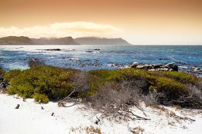 Awesome South Africa Collection - Sunset from Boulders Beach-Philippe Hugonnard-Photographic Print