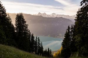 Hardergrat (Ridge) Hike Lake Brienz, Canton Of Bern, Switzerland: Hiking Hardergrat From Interlaken by Axel Brunst