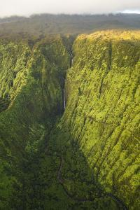 TNC Waikamoi Preserve, Maui, Hawaii, USA: Nature Conservancy's Waikamoi Preserve From Helicopter by Axel Brunst