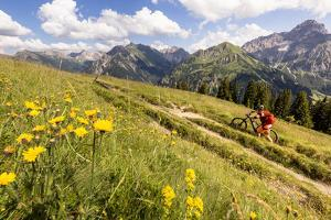 Two Mountain Bikers Riding Through A Flower-Picked Alpine Meadow In Austria by Axel Brunst