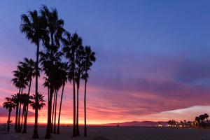 Venice Beach, CA, USA: Evening Sky Over Pacific Ocean, Santa Monica Mts & Pier With Palm Trees by Axel Brunst