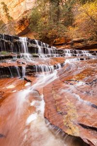 Zion NP, Utah, USA: Archangel Waterfall (Cascades) River Forks Off North Creek Along Hike To Subway by Axel Brunst