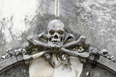 Historical Cemetery, Tomb, Burial Chamber, Skull, Medium Close-Up by Axel Schmies