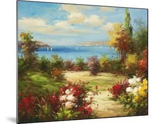 Coveside Garden by Axiano