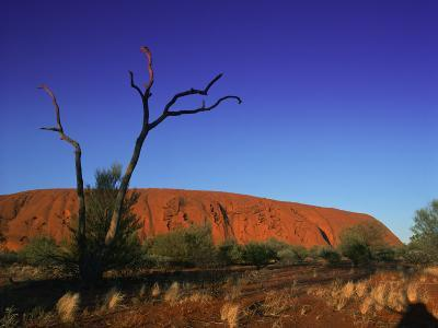 Ayers Rock at Sunrise, Uluru-Kata Tjuta National Park, Northern Territory, Australia, Pacific-Mawson Mark-Photographic Print