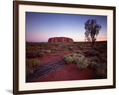Ayers Rock, Uluru at Sunset--Framed Photographic Print