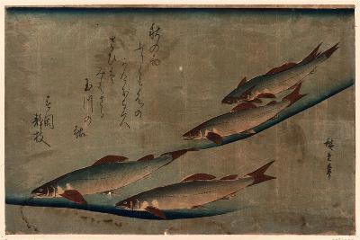 Ayu Zu-Utagawa Hiroshige-Giclee Print
