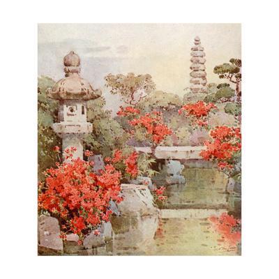 https://imgc.artprintimages.com/img/print/azaleas-kyoto_u-l-prd4470.jpg?p=0