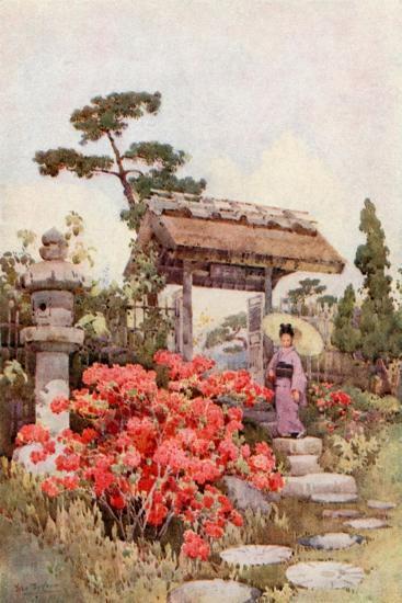Azaleas-Ella Du Cane-Giclee Print