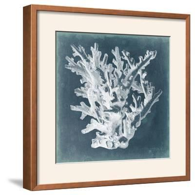Azure Coral I-Vision Studio-Framed Photographic Print