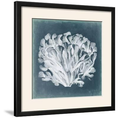 Azure Coral III-Vision Studio-Framed Photographic Print