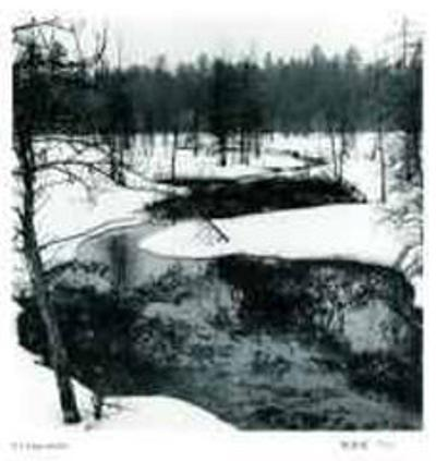 Untitled - Snowy River by B. A. King