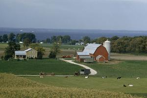 Dairy farms with tractors and cows line the shore of a windy bay by B. Anthony Stewart