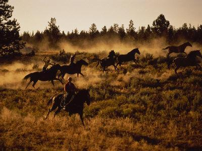Wild Horse Roundup, OR
