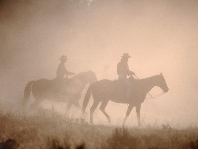 Wrangling Wild Horses