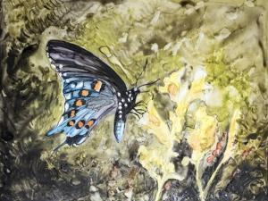 Butterfly in Nature I by B. Lynnsy