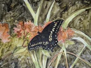 Butterfly in Nature III by B. Lynnsy
