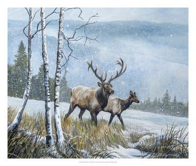 Elk Journey IV