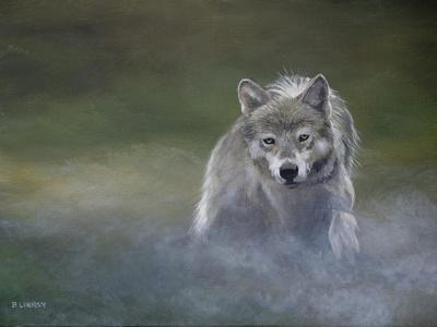 Misty Wild I