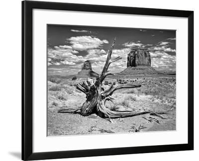 B&W Desert View V-David Drost-Framed Photographic Print