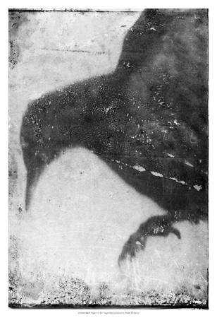 https://imgc.artprintimages.com/img/print/b-w-flight-i_u-l-f93xf30.jpg?p=0