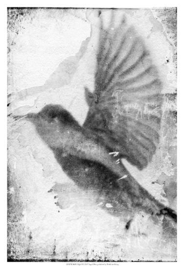 B&W Flight II-Ingrid Blixt-Art Print