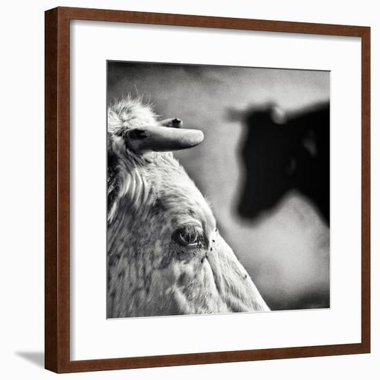 B & W-Piet Flour-Framed Photographic Print
