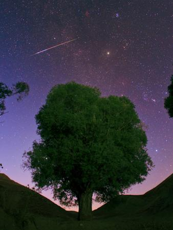 A Bright Meteor Shoots across the Sky Near Jupiter