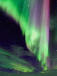 A Colorful Aurora Display in the Night Sky of Lapland, Sweden by Babak Tafreshi