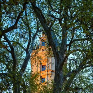 A Tower of the Schwerin Palace Through Tree Branches by Babak Tafreshi