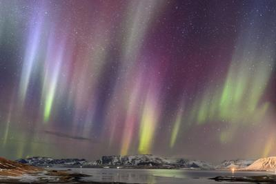 Aurora Borealis Above a Fjord in Western Iceland
