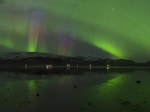Aurora Borealis, the Northern Lights, Above a Lake in Southern Iceland by Babak Tafreshi