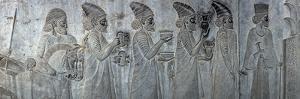 Bas-Reliefs on the Great Staircase of Apadana Palace, Persepolis by Babak Tafreshi