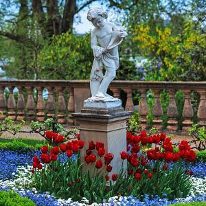 Flowers and a Statue in the Historic Schwerin Palace by Babak Tafreshi