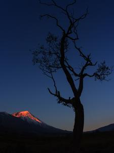 The First Rays of Sunrise Shine on Mount Damavand in the Alborz Mountains by Babak Tafreshi