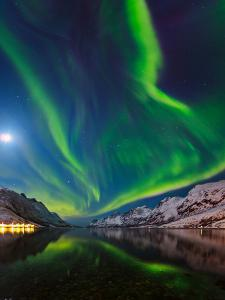 View of the Aurora Borealis, Northern Lights, Rand Moon Reflected in a Fjord by Babak Tafreshi