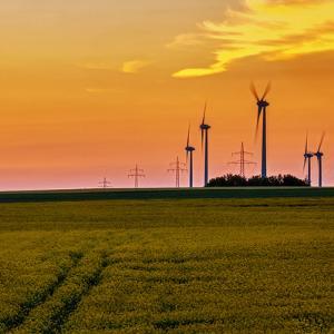 Wind Turbines Spin in a Rape Field by Babak Tafreshi