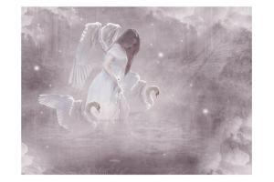 Swan Fairy by Babette