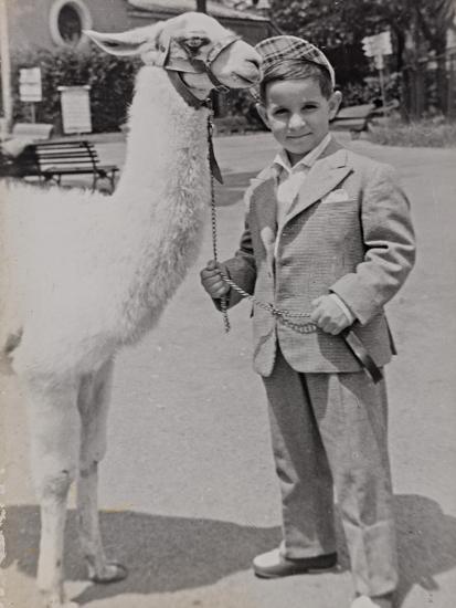 Baby at the Zoo with a Llama-Luigi Leoni-Photographic Print