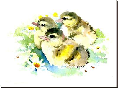 Baby Ducks-Suren Nersisyan-Stretched Canvas Print