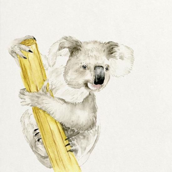 Baby Koala II-Melissa Wang-Art Print