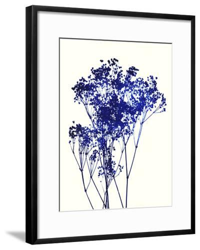 Baby's Breath-Garima Dhawan-Framed Art Print