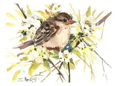 Baby Sparrow-Suren Nersisyan-Art Print