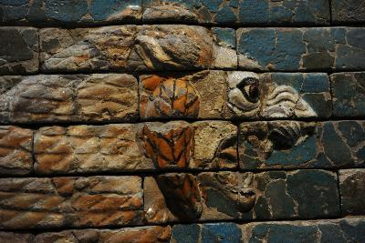 Babylon's Lion. Lion Decorated the Processional Wal (Ishtar Gate). 575 BC. Detail--Photographic Print