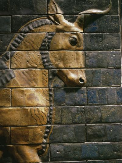 Babylonian Wall Tiles, Babylon, Iraq, Middle East-Christina Gascoigne-Photographic Print
