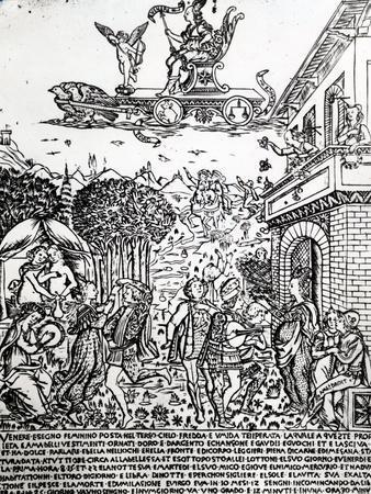 Venus, C.1464